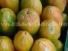 clientes-papaya-2