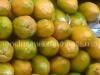 clientes-papaya-3
