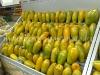 clientes-papaya-5