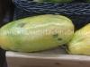 clientes-papaya-6