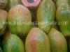 clientes-papaya