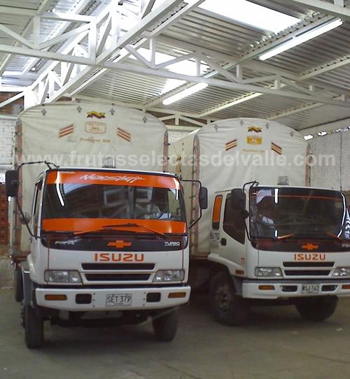 Transportes Frutas Selectas del Valle